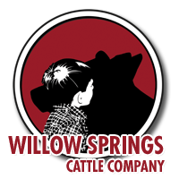 Willow Springs Cattle Company Retina Logo